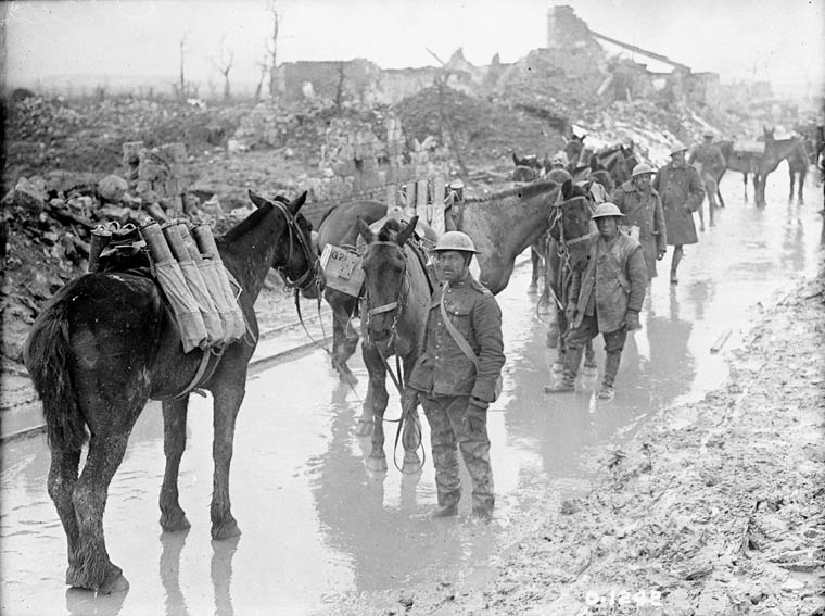 Pack horses transporting ammunition to the 20th Battery, Canadian Field Artillery. (item 1)