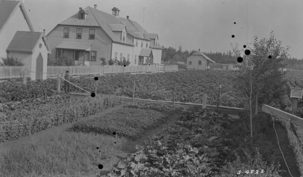 Hay River Indian Residential School (St. Peter's Mission), student standing in a garden adjacent to the school, 1922