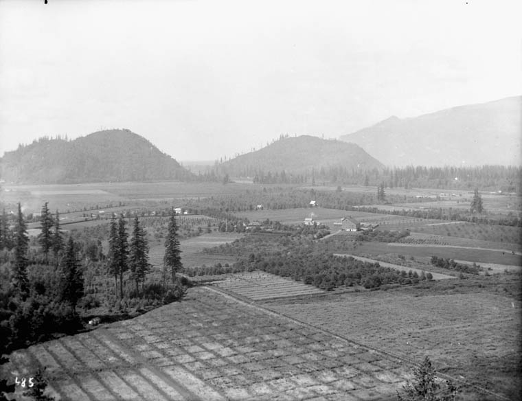 General view from hill, $Exp. Farm$, Agassiz. (item 1)