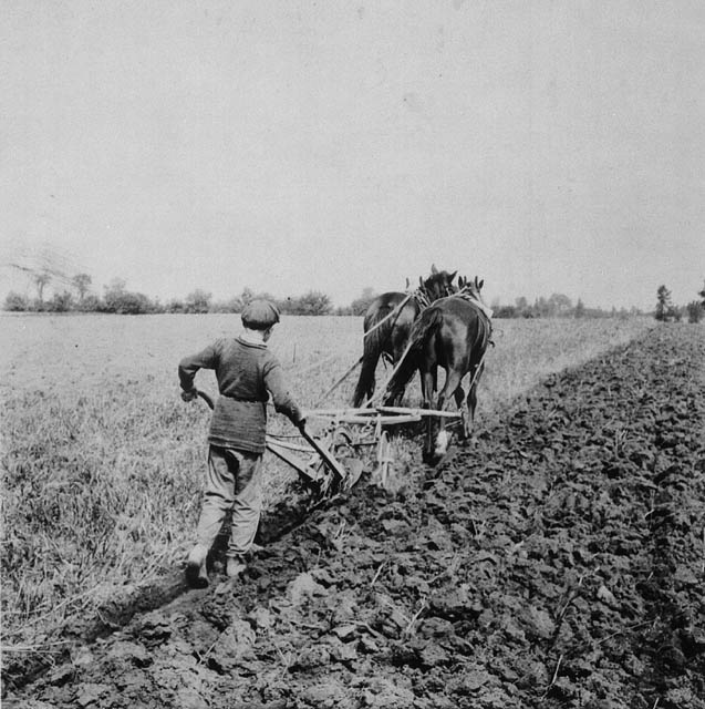 Boy ploughing at Doctor Barnardo's Industrial Farm  (item 1)