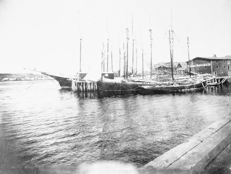 Waterfront view of Lunenburg, N.S. (item 1)