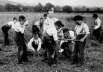 Photograph of boys training for work at Philanthropic Society Farm School