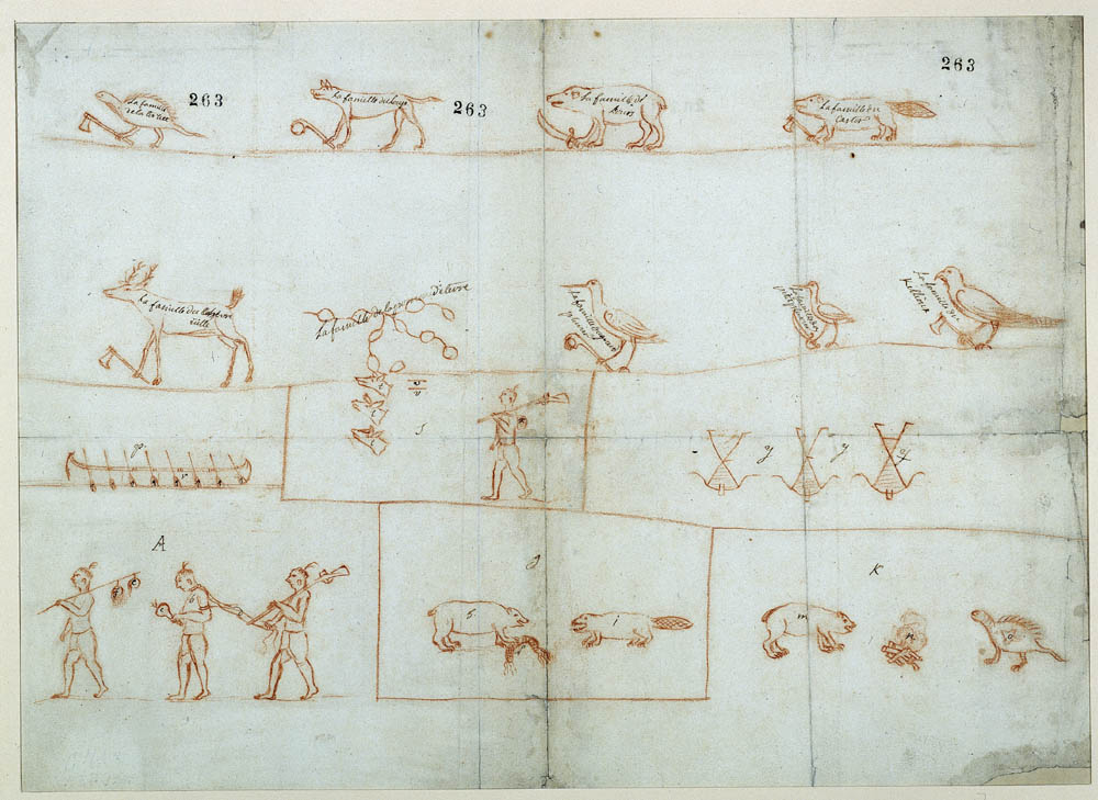 Report on the nine Iroquois families, with totems, 1666. FR CAOM COL C11A 2 fol. 263-269