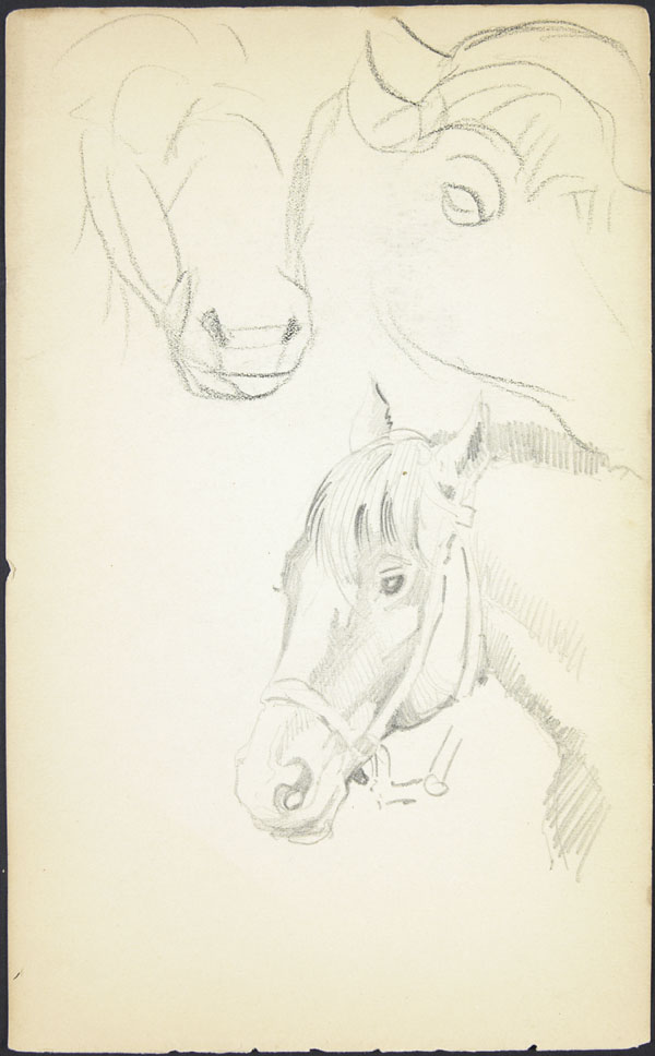 Sketch of a horse's head with a bridle, Somme