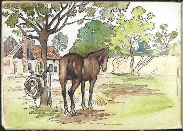 Cheval dans un enclos de ferme, Somme