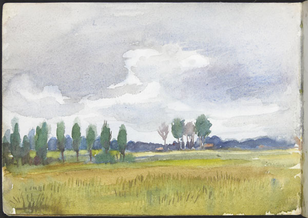 View of a field with trees