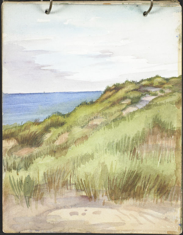 View of the sea from the dunes, French Flanders