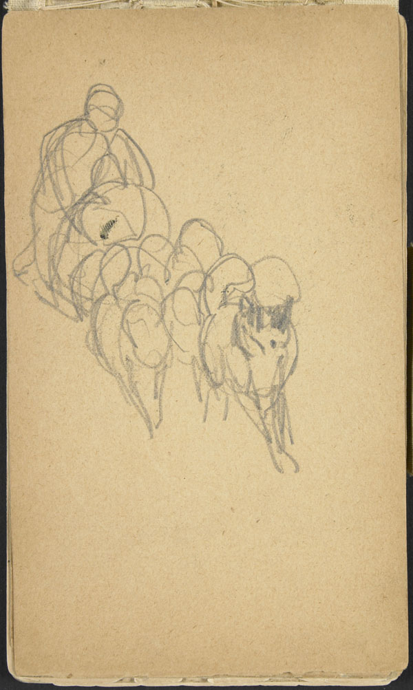 Study of a person with a group of animals, Belgium