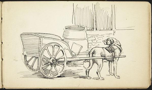 Dog-pulled cart, Belgium