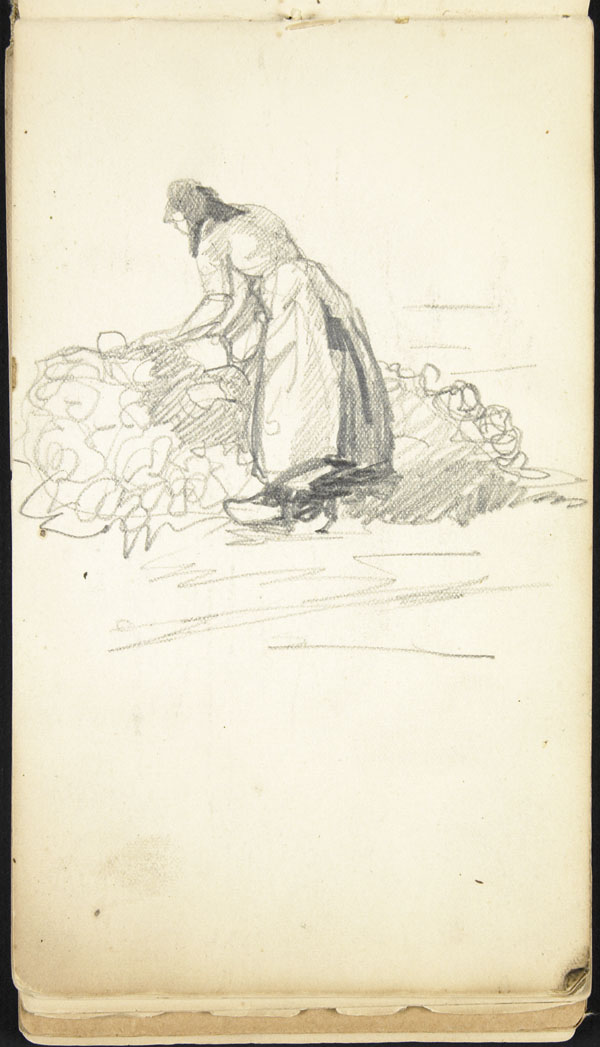 Woman tending to a harvest of turnips, Belgium