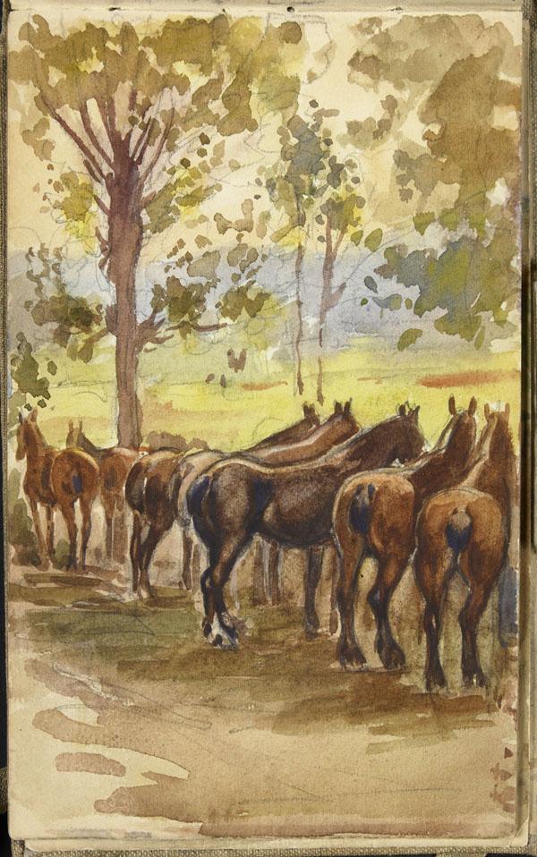 Squadron of horses, Pas-de-Calais