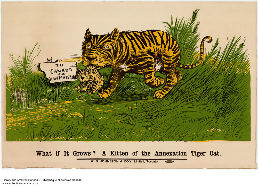 What if it Grows?  A Kitten of the Annexation Tiger Cat. (item 1)