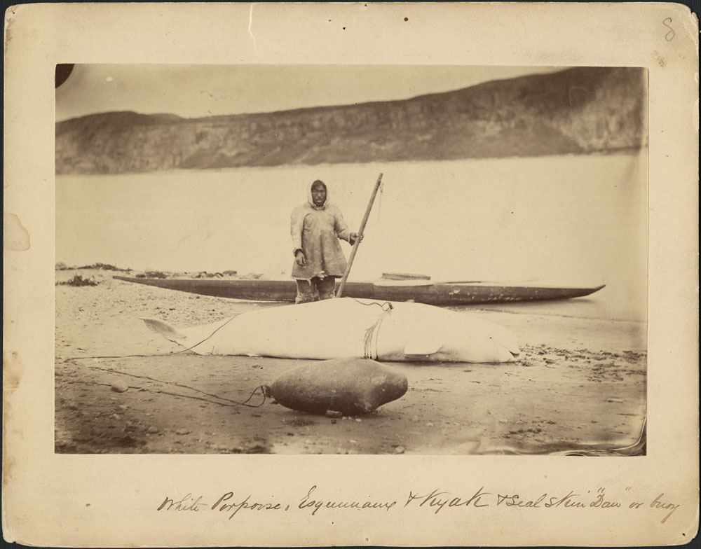 "Portrait of a hunter, a beluga, a seal skin ""daw"" (a buoy), and a kayak along the edge of the Little Whale River, Quebec. Photographer: George Simpson McTavish."